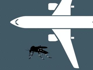 Zika likely to spread despite travel advisory