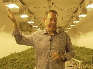The high school teacher became a cannabis CEO