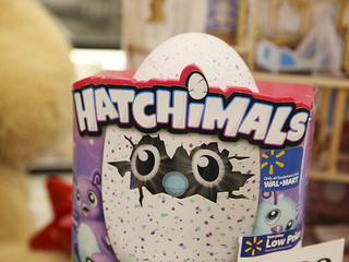 Looking for Hatchimals? You might be in luck