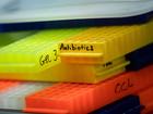 Drug-resistant superbug may be widespread