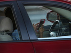 New device can prove you were texting & driving