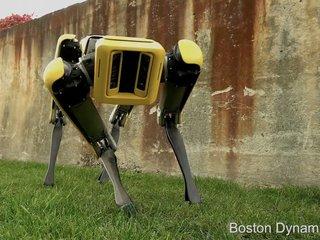 SpotMini robot dog gets an update