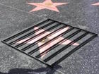 Trump's Hollywood star put behind bars