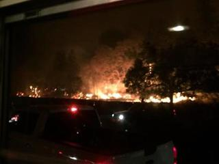 Bus driver rescued kids from Cali. wildfire